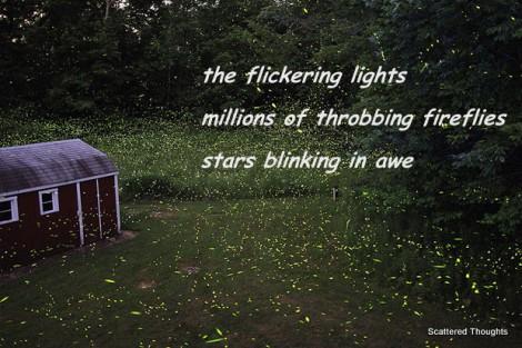 1-fireflies1