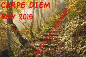 1-Carpe Diem Logo May 2015