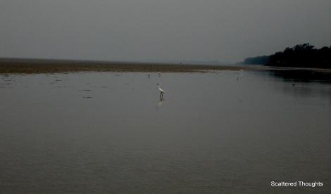 1-ChaNdipur 056
