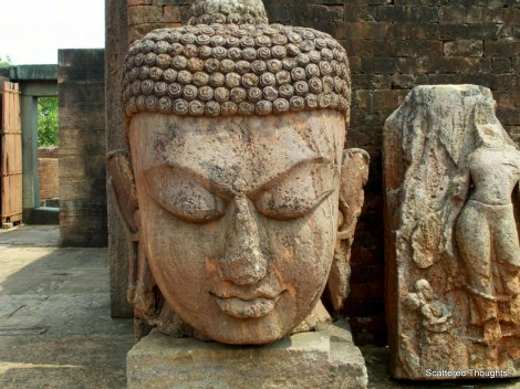 The Magnificent Buddha Head